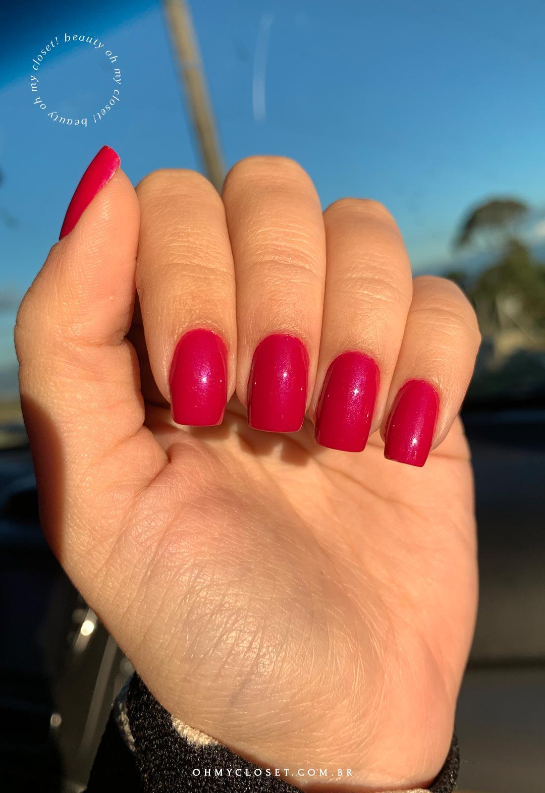 Miss Rose 61, Cor entre pink e magenta, brilhando no sol.